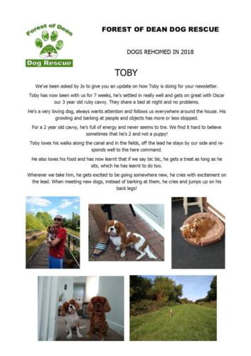 Toby Poster