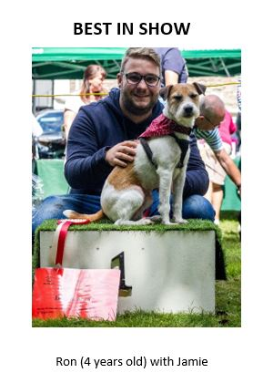 Fido's Fun Day 2019