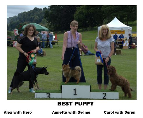 Mitcheldean Dog Show July 2017